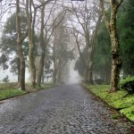 Cobble road near Furnas, Azores